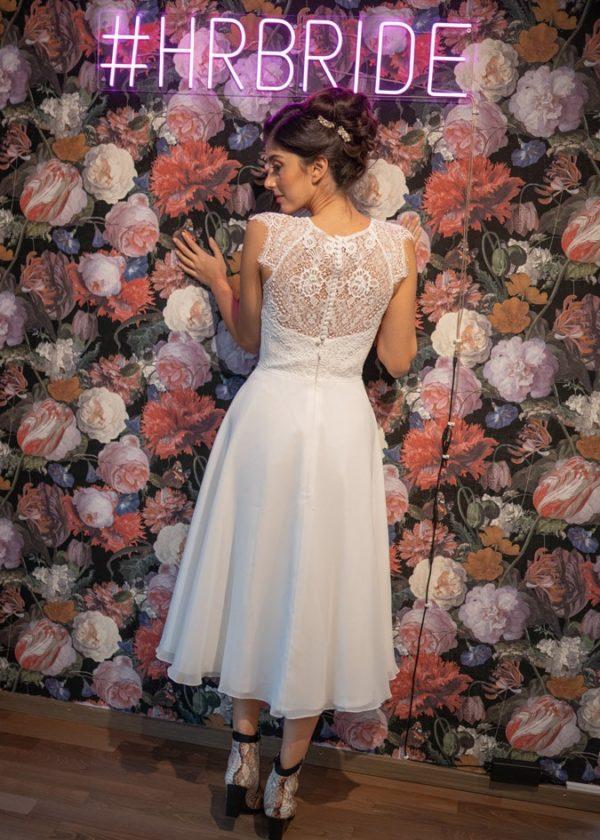 bridalicious Abelia